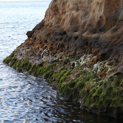 Intriguing rock surfaces beautifully shaped by waves over the ages