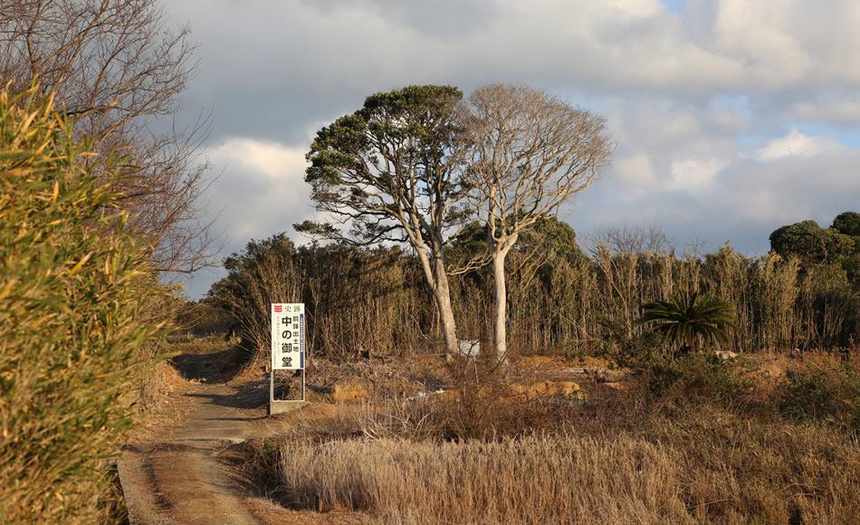 Dotaku Archeological Site: Naka-no-Mido