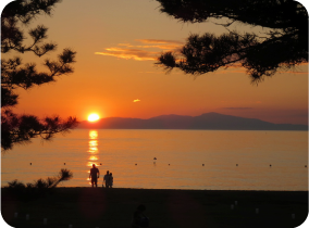 Keinomatsubara- Pine Grove