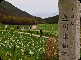 Tachikawa Narcissus Park